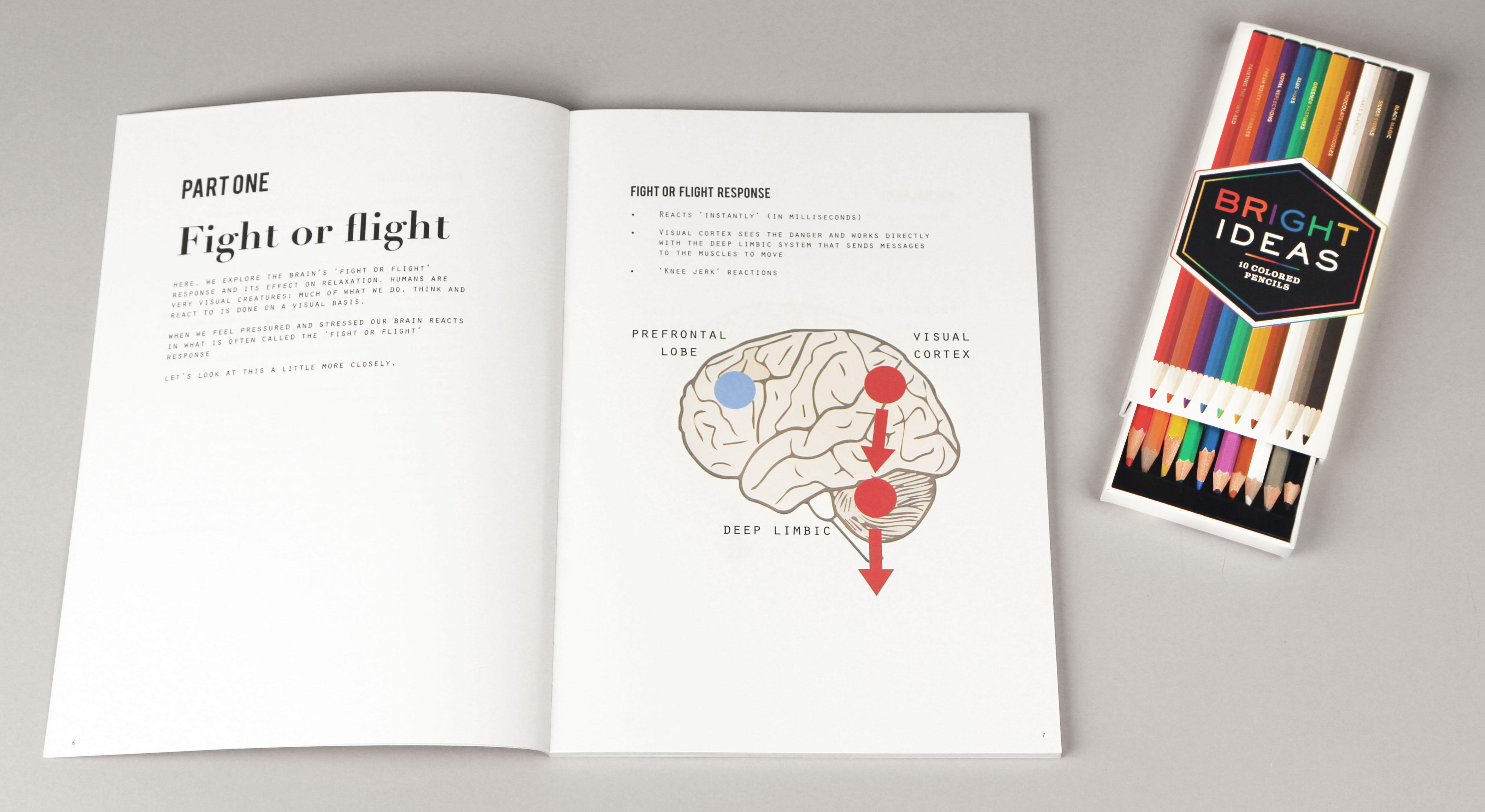 Brain Science Coloring For Agility And Fast Learning Bright
