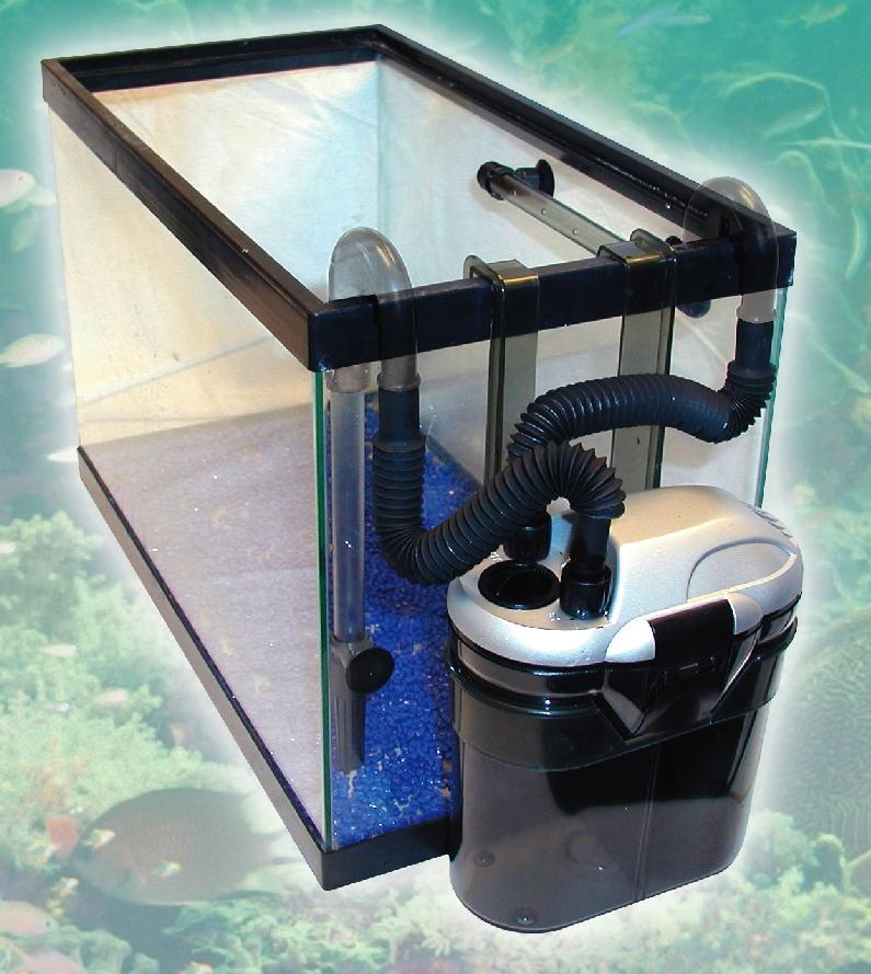 Amazon.com : KollerCraft TOM Rapids Mini Canister Filter, 80 GPH : Aquarium Decor : Pet Supplies