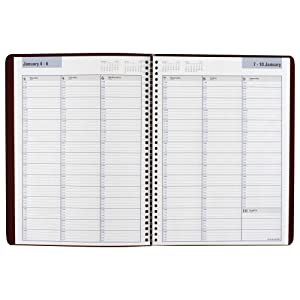 Amazon.com : DayMinder Weekly Appointment Book / Planner 2016, 8 x ...