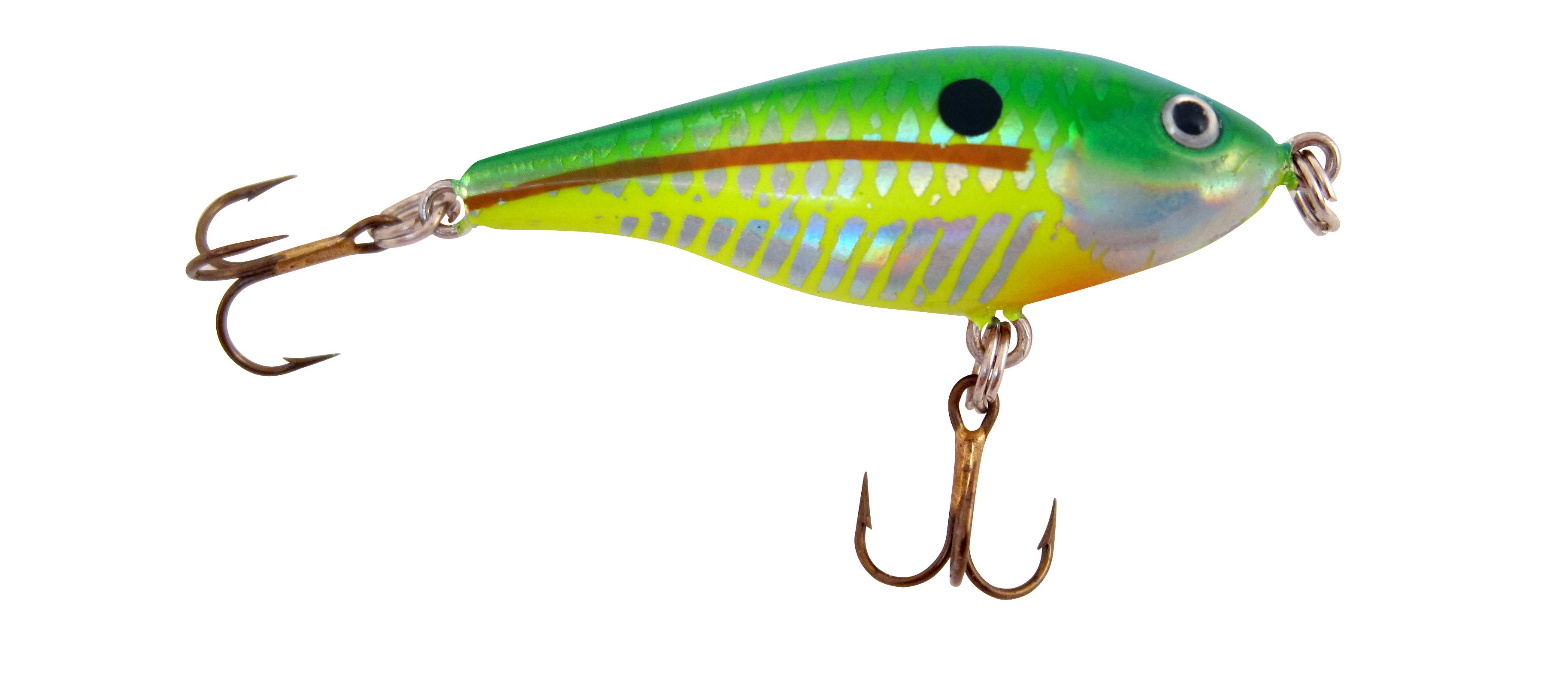 Rebel raider citrus shad fishing sinking for Amazon fishing lures