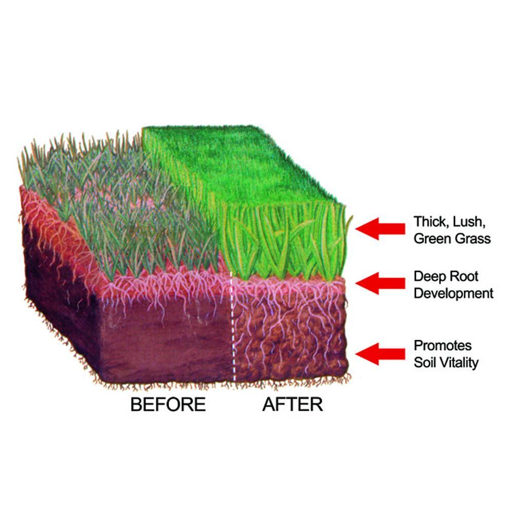 amazing when to fertilize new grass Part - 2: amazing when to fertilize new grass ideas