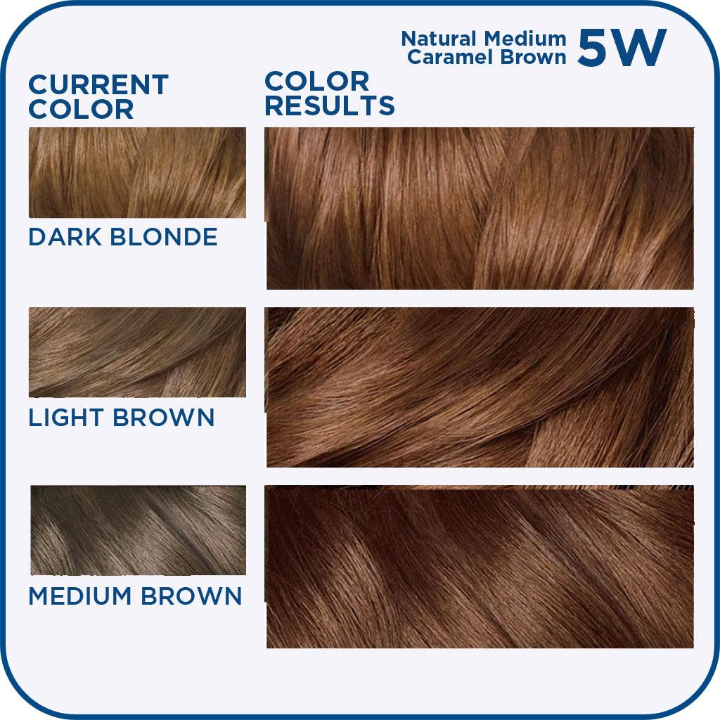 medium caramel brown hair dye option of 29 elegant medium