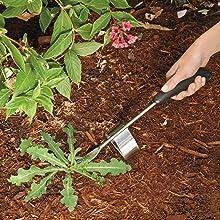 Amazon.com: OXO 16078 gel-e Acero Inoxidable Cultivador ...