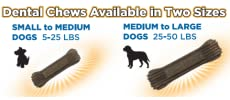 natural balance dog dental chews available in two sizes
