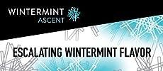 5 Gum: Wintermint Ascent – Mint flavored chewing gum