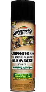 Spectracide Carpenter Bee & Ground-Nesting Yellowjacket Killer Foaming