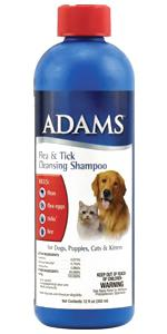 Adams Flea And Tick Spray For Cats And Dogs 16 Oz Ebay
