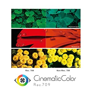 Cinematic Color as Big as Life in Your Living Room
