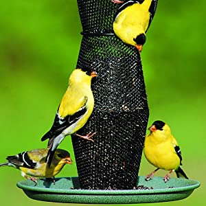 metal finch com duncraft nyjer feeder bird