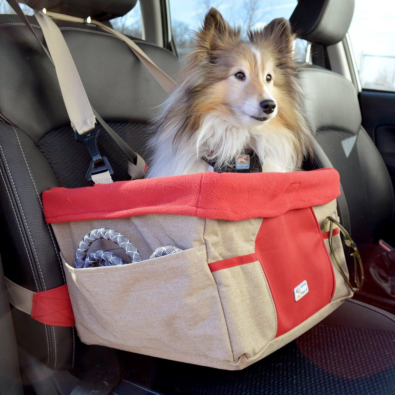 Amazon Com Kurgo Heather Pet Booster Seat With Dog