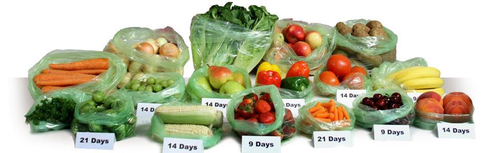 Amazon Com Debbie Meyer Greenbags Freshness Preserving