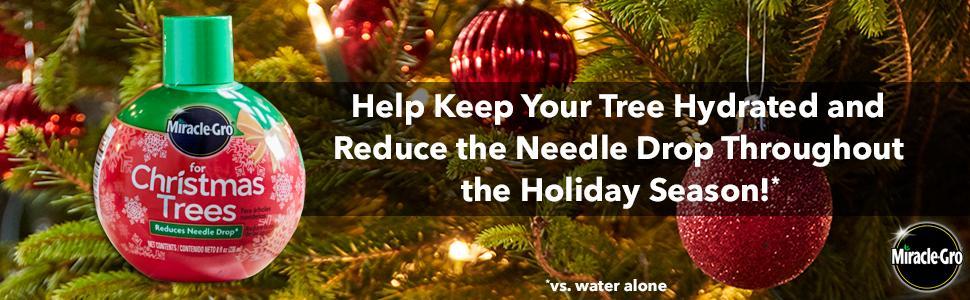 Amazon.com : Miracle-Gro for Christmas Trees : Christmas Tree ...