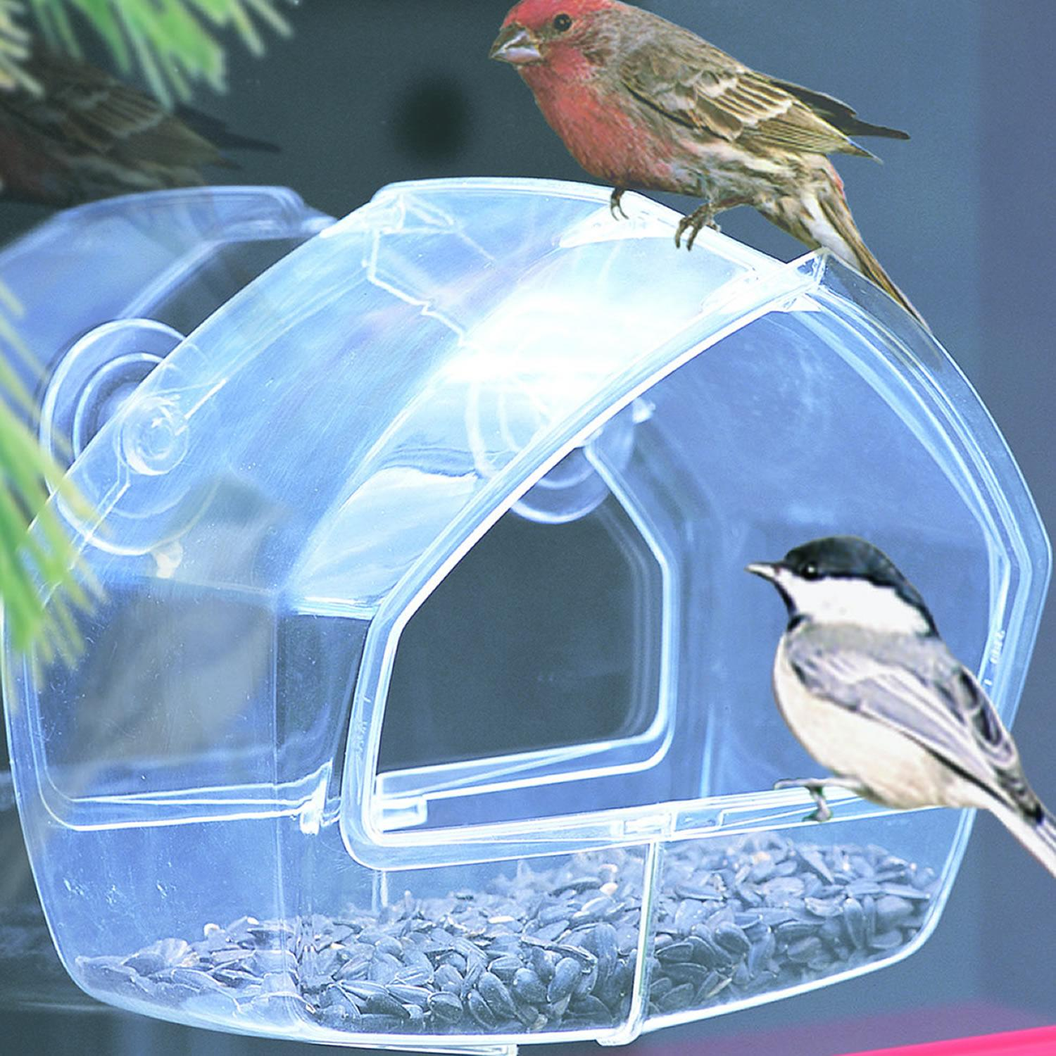 Window bird feeder cat - Birdscapes Clear Window Wild Bird Feeder