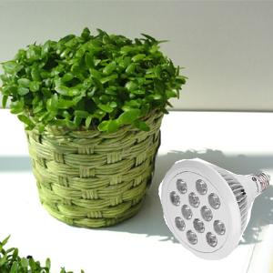 led plant,grow light, led grow, greenhouse light,garden greenhouse, e27 led grow light,