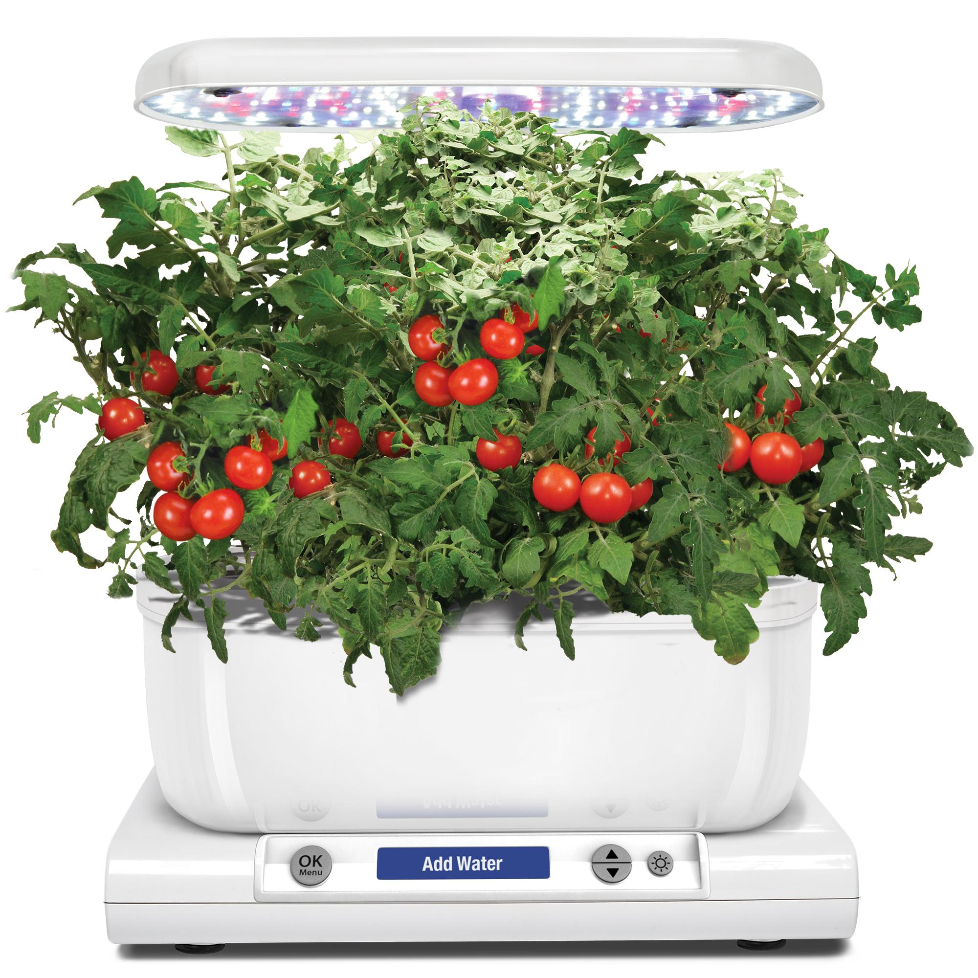Amazoncom aerogarden harvest with gourmet herb seed pod for Aero garden com