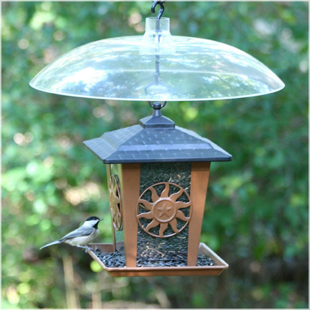 squirrel pole classic feeders canada proof birds forge on view poppy way choice bird a feeder metal mounted