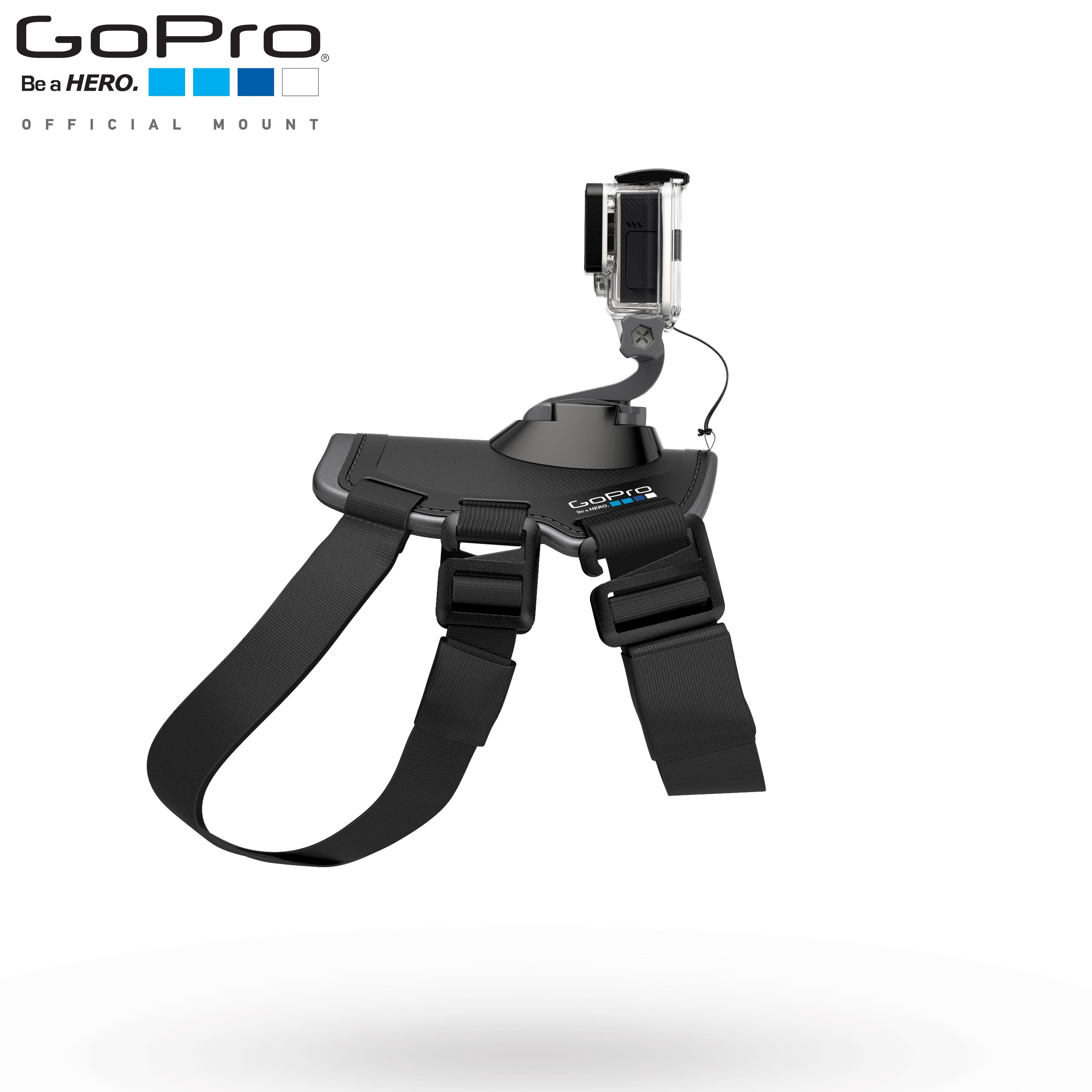 Amazon.com : GoPro Fetch (Dog Harness)(GoPro Official
