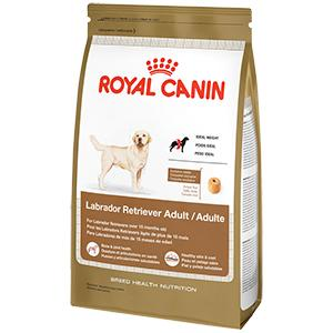 royal canin breed health nutrition labrador retriever adult dry dog food 30 pound. Black Bedroom Furniture Sets. Home Design Ideas