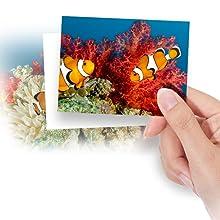 DMC-TS6A Beautiful Underwater Shots