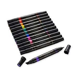 12 chisel/fine double-ended art markers.