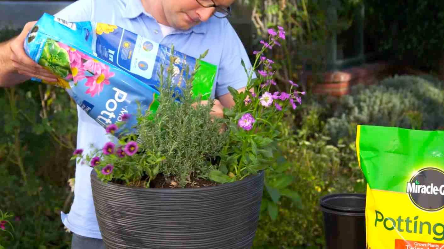 Potting Mix, Potting Soil, Soil, Containers, Orchid, Cactus, Palm,