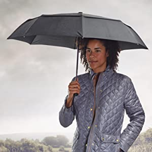 Amazon Com Amazonbasics Automatic Travel Umbrella With
