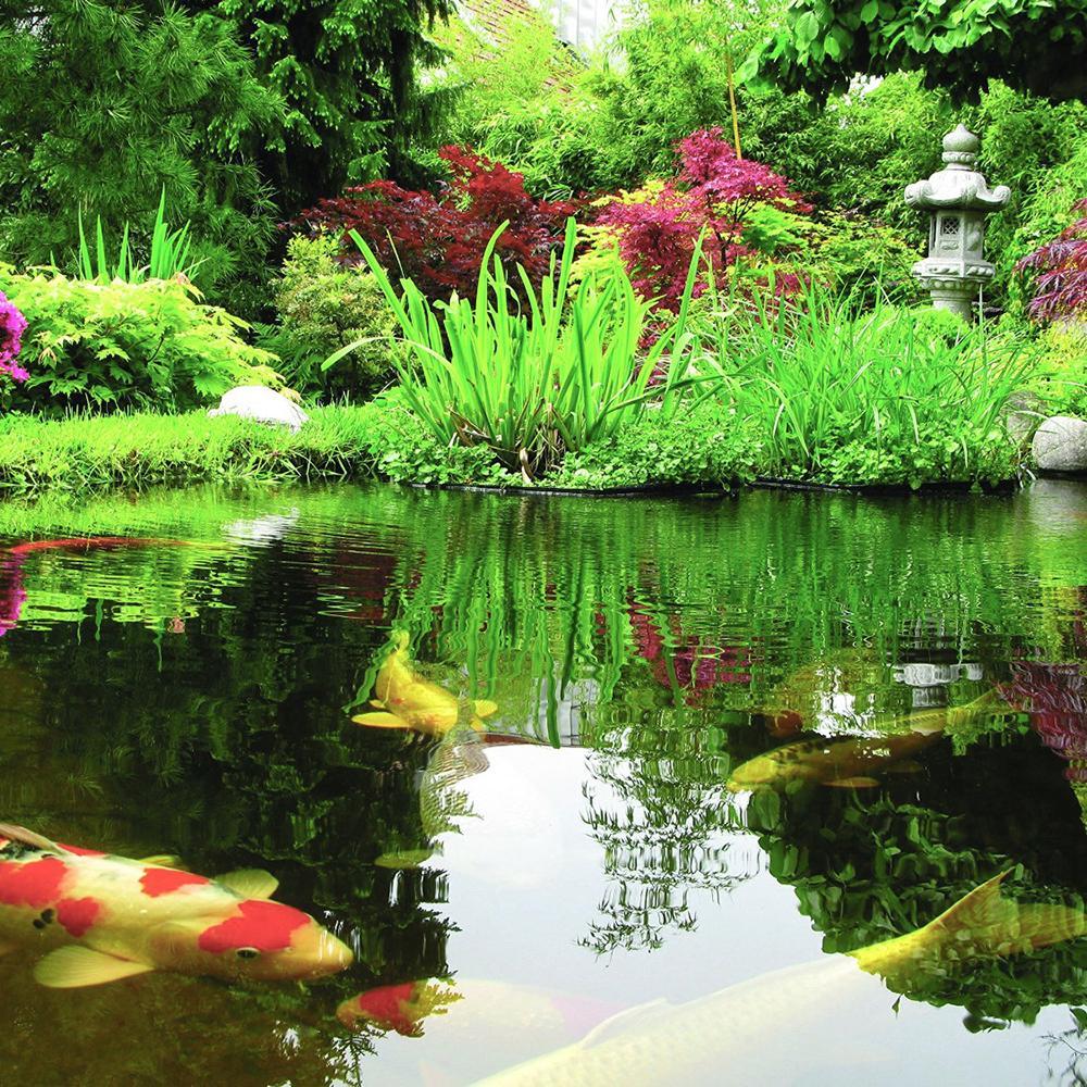 Healthy Ponds 51116 Aquasphere Pro