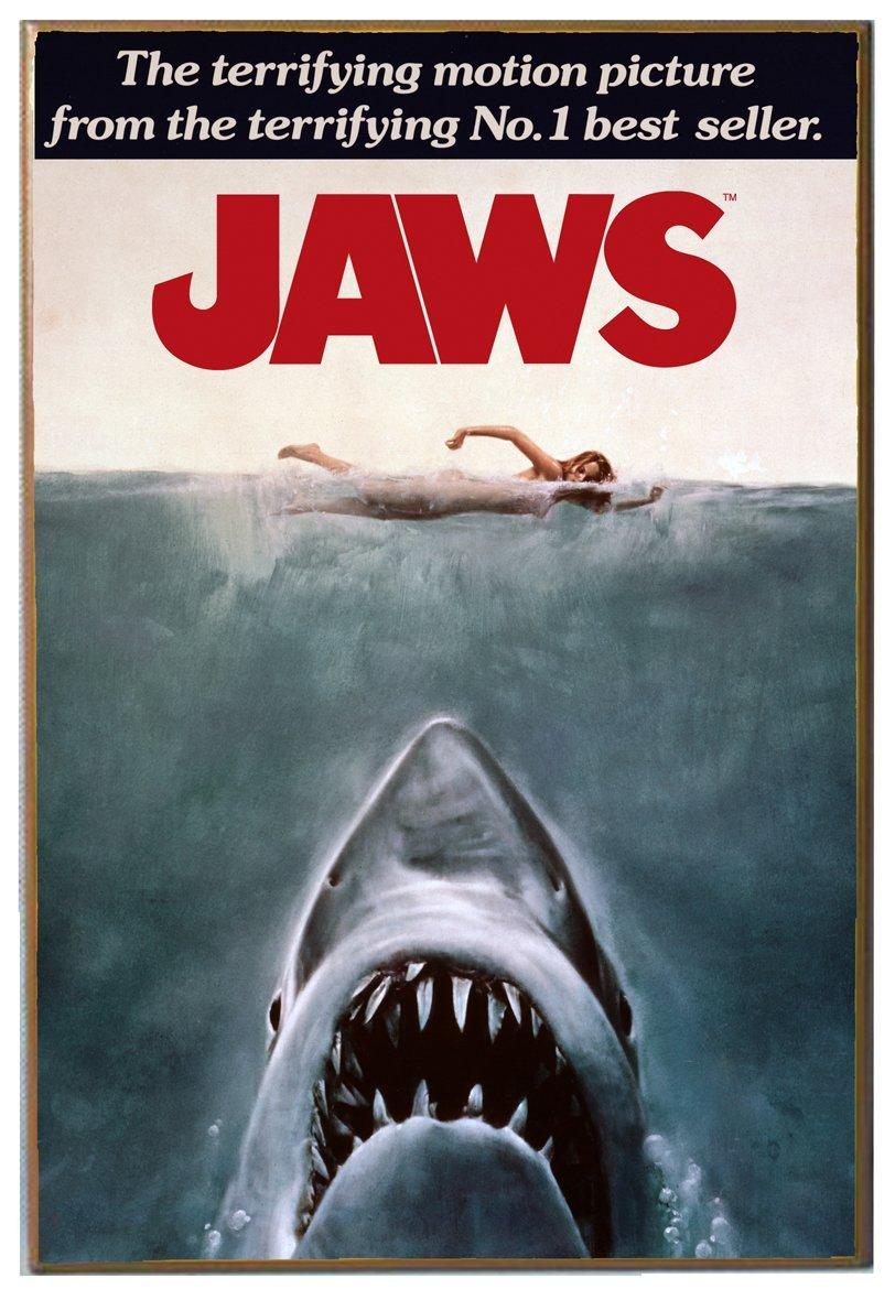 Amazon.com: Silver Buffalo JW0136 Jaws Movie Poster Wood ...
