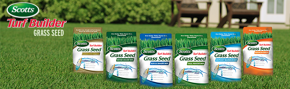 Amazon Com Scotts Turf Builder Grass Seed Sun And