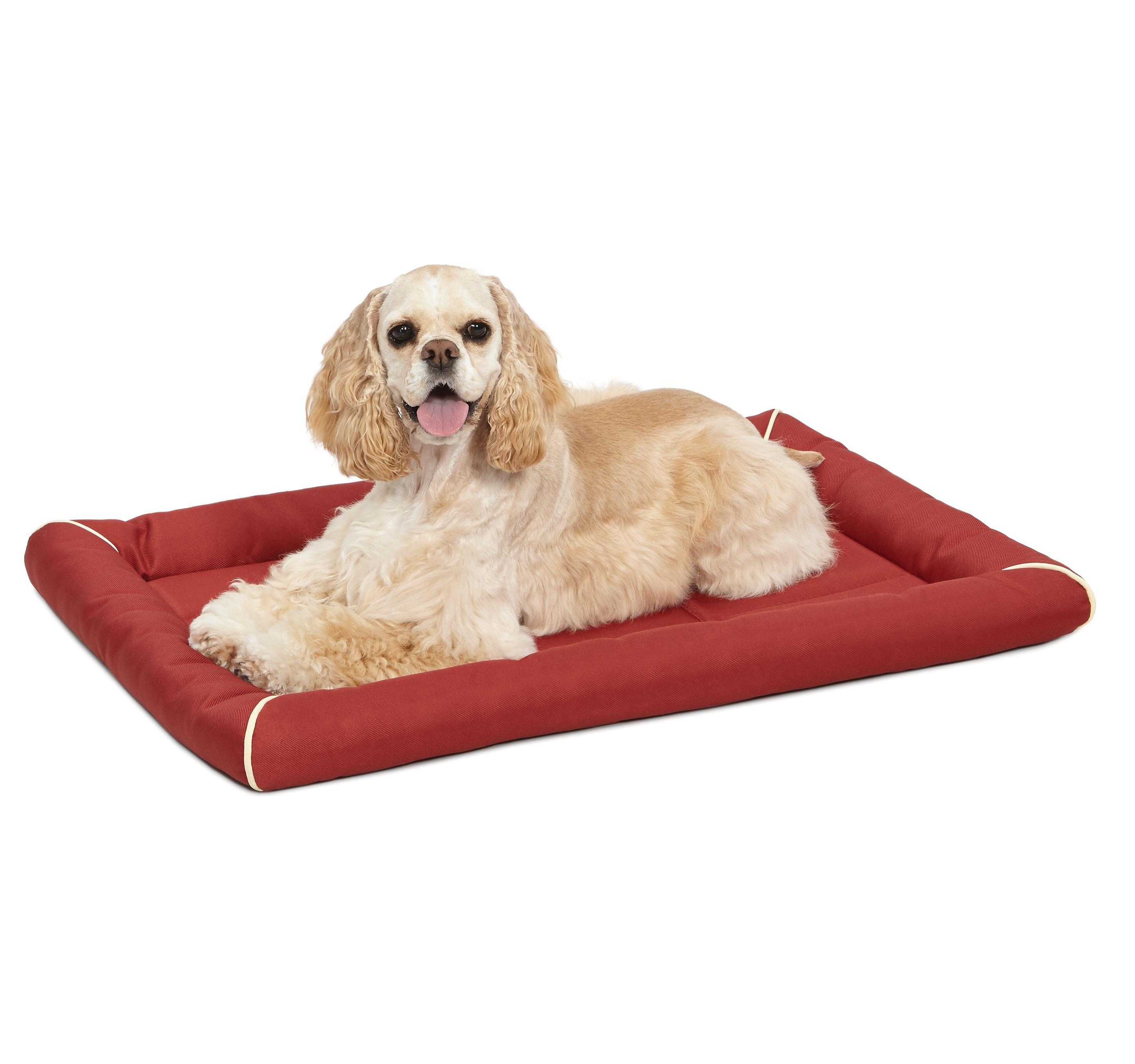 Amazoncom maxx ultra rugged dog bed pet beds pet for Rugged dog bed