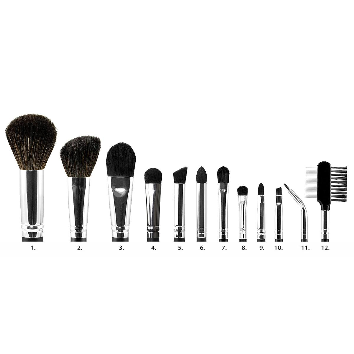 coastal scents brushes. 12 piece brush set brushes reference chart coastal scents