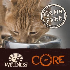 best cat food, gain free, protein, CORE, Wellness, grain-free, Hearty Cuts