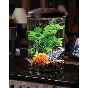 Kollercraft 3 gallon 360 view aquarium with for Fish tank decorations amazon