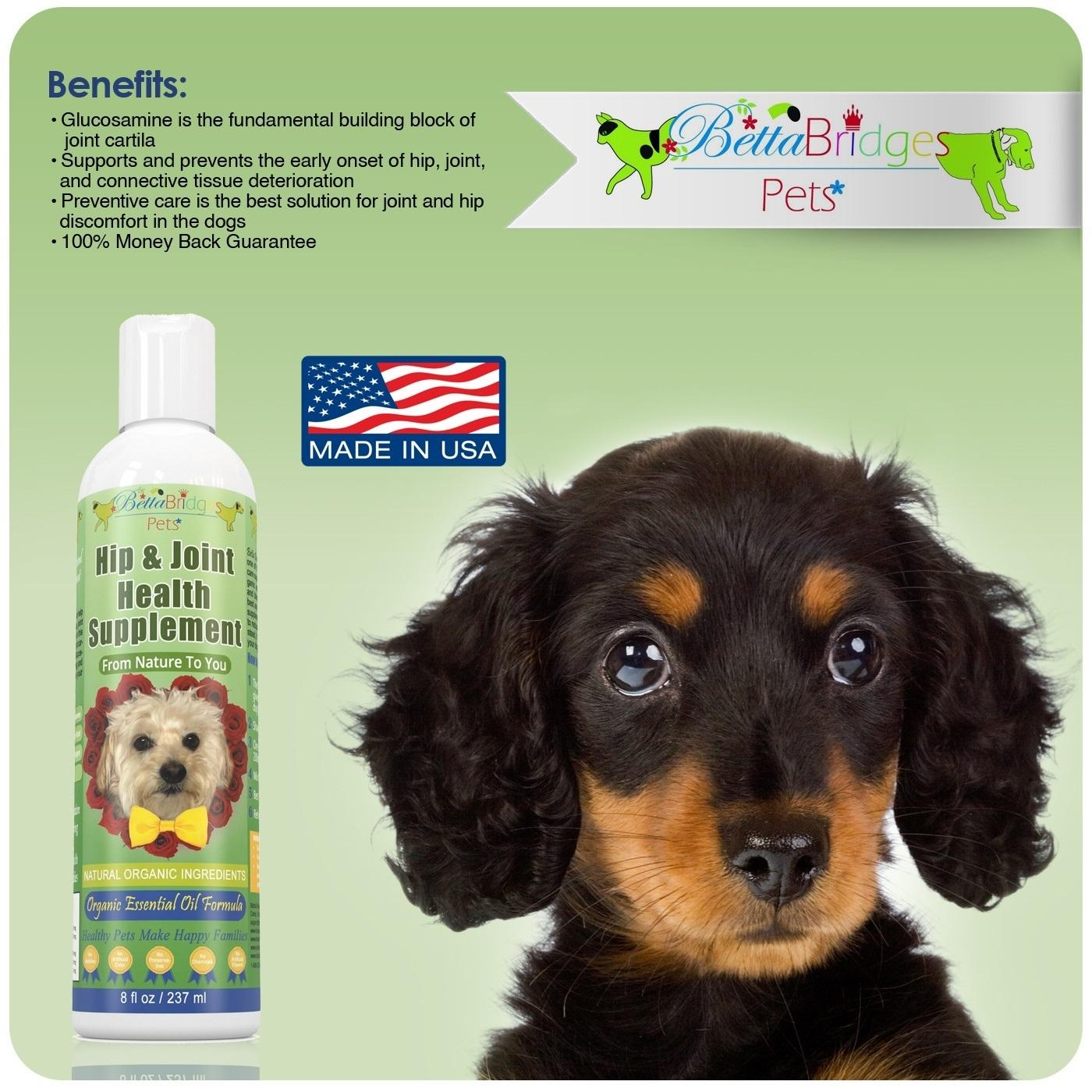 Amazon Com Betta Bridges Pets Liquid Glucosamine For