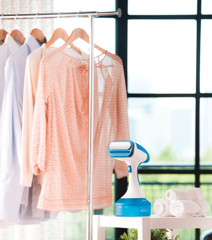 Can I Use A Garment Steamer To Kill Bed Bugs