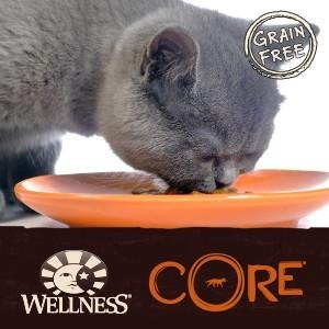 best wet cat food, high protein, grain free, CORE, wet cat food, canned cat food