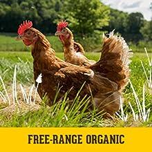 free-range organic eggs, organic eggs, free-range, organic valley