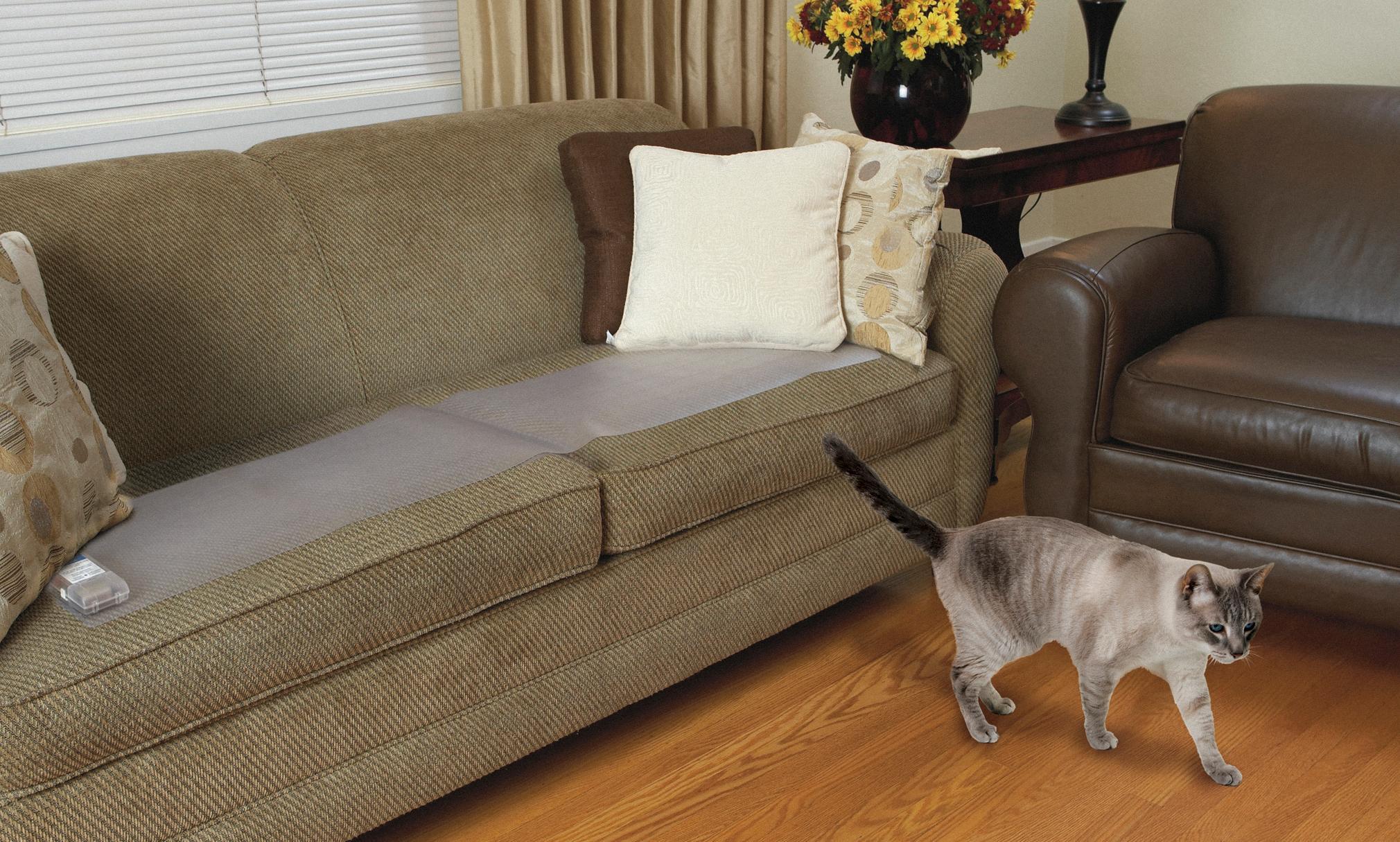 Amazon Com Petsafe Scatmat Indoor Pet Training Mat