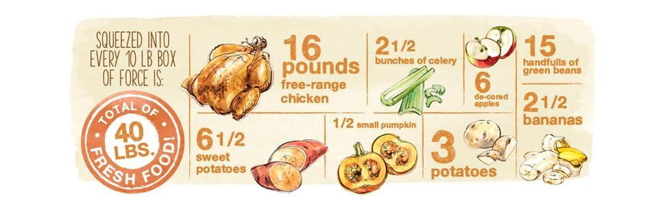 dehydrated dog food, chicken dog food, grain free dog food, healthy dog food,