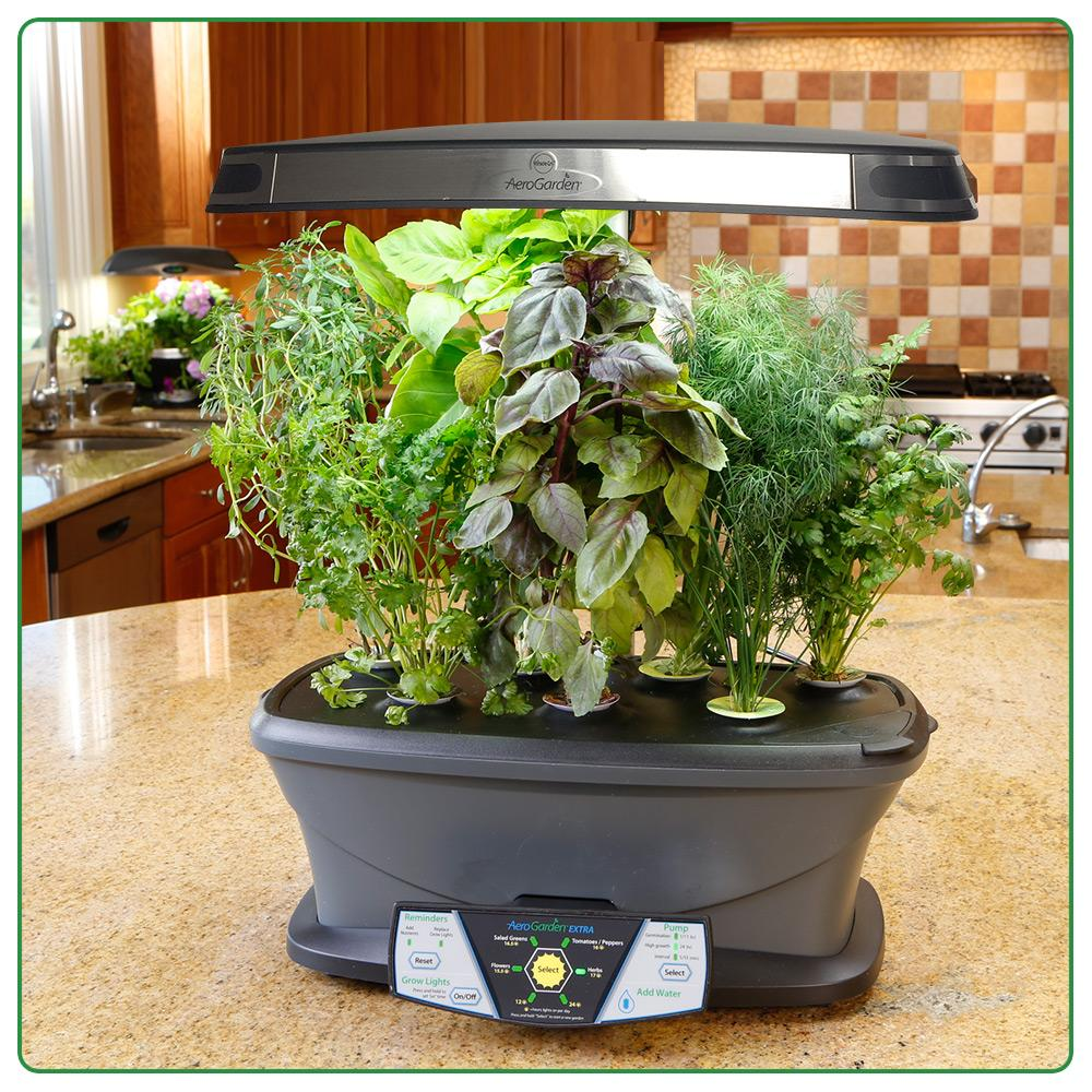 Herb Kits For Indoors: Amazon.com : AeroGarden Extra (LED) With Gourmet Herb Seed