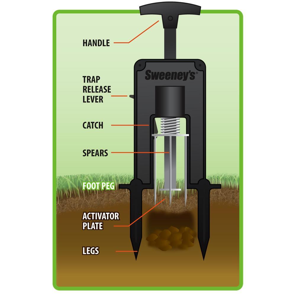 amazon com sweeney u0027s s9015 deadset mole trap sweeney mole