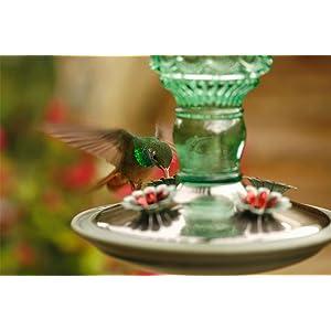 Perky-Pet Green 10-Ounce Antique Bottle Glass Hummingbird Feeder