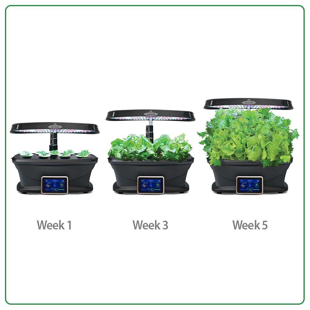 Aerogarden Harvest Wifi: Amazon.com : AeroGarden Bounty Wi-Fi With Gourmet Herb