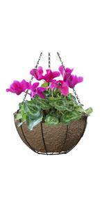 Hanging Basket with EcoLiner