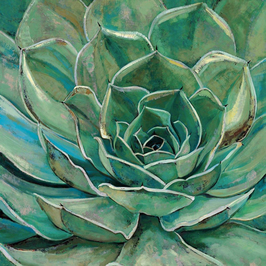Amazon Com Portfolio Canvas Decor Agave Flower Framed And