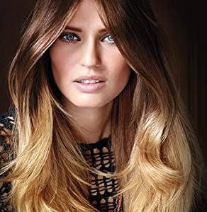 Feria Ombre On Color Treated Hair