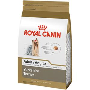 Amazon Com Royal Canin Breed Health Nutrition Yorkshire Terrier