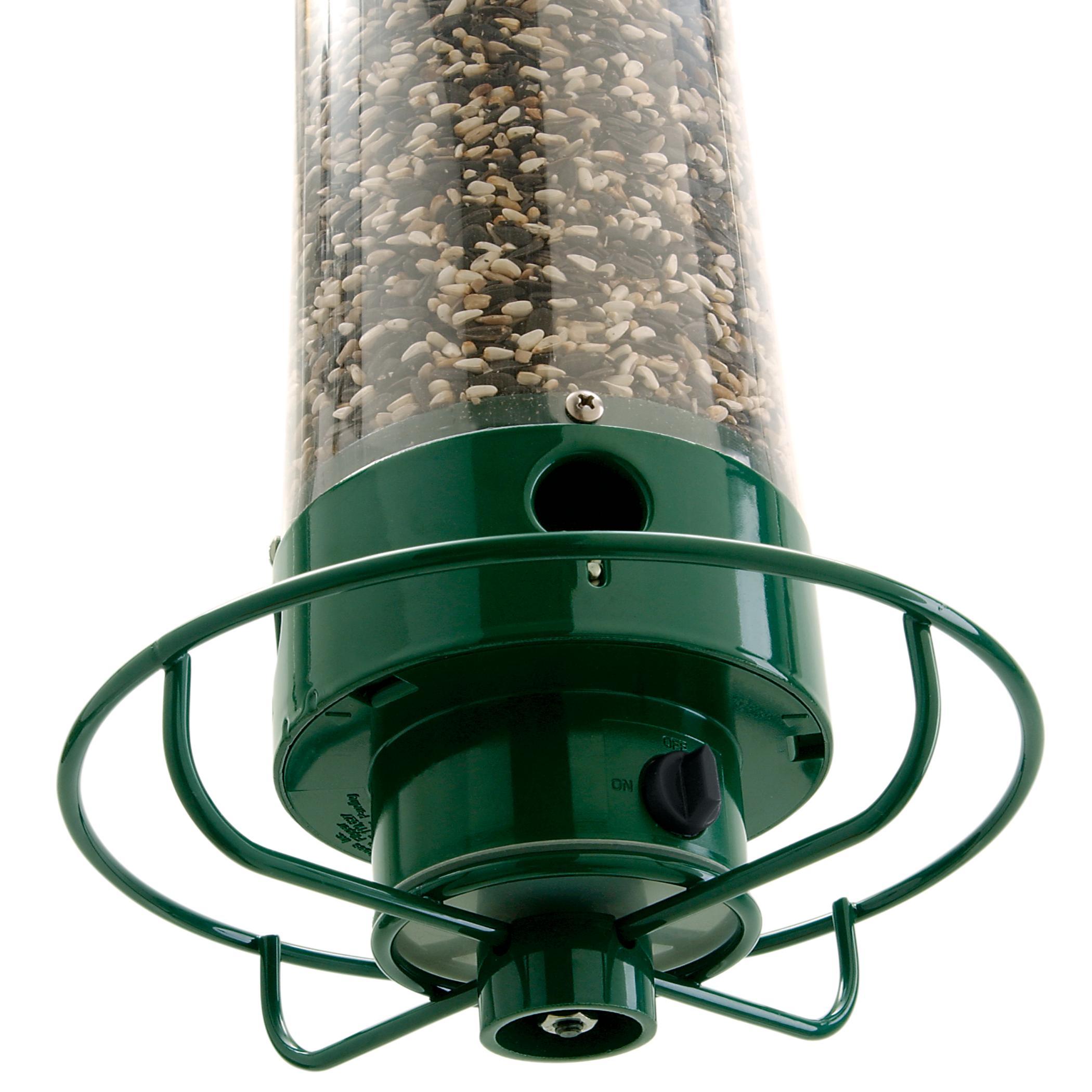 Amazon.com : Droll Yankees Squirrel Proof Bird Feeder