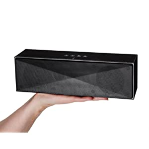 Amazon.com: AmazonBasics Large Portable Bluetooth Speaker