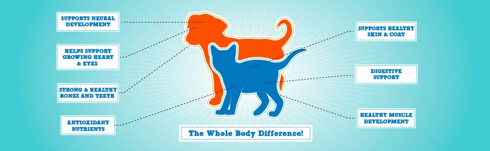 benefits of natural balance whole body health dog food